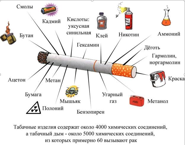 картинка взята с сайта lider-74.ru